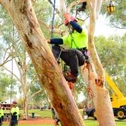 Australian-tree climbing championships